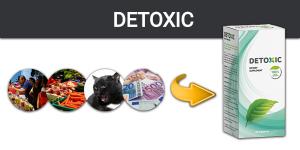 Detoxic – Oczyść swój organizm z nieproszonych pasożytów